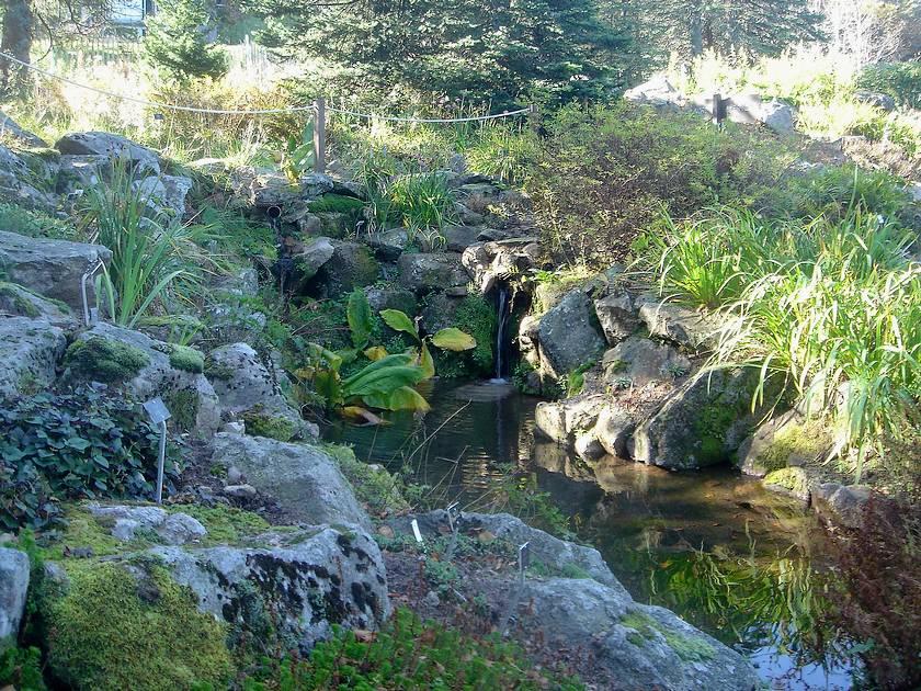 Mes parcs et jardins jardin d 39 altitude du haut chitelet - Jardin d altitude du haut chitelet ...